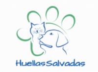logo-e1490717139248